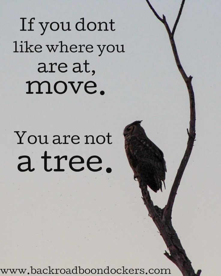 Travel inspiration quote | Meaningful quotes ...