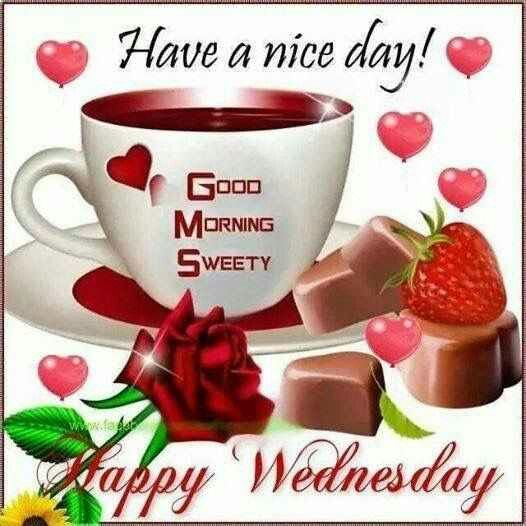 Have A Nice Day Good Morning Wednesday Good Morning Wednesday Hump