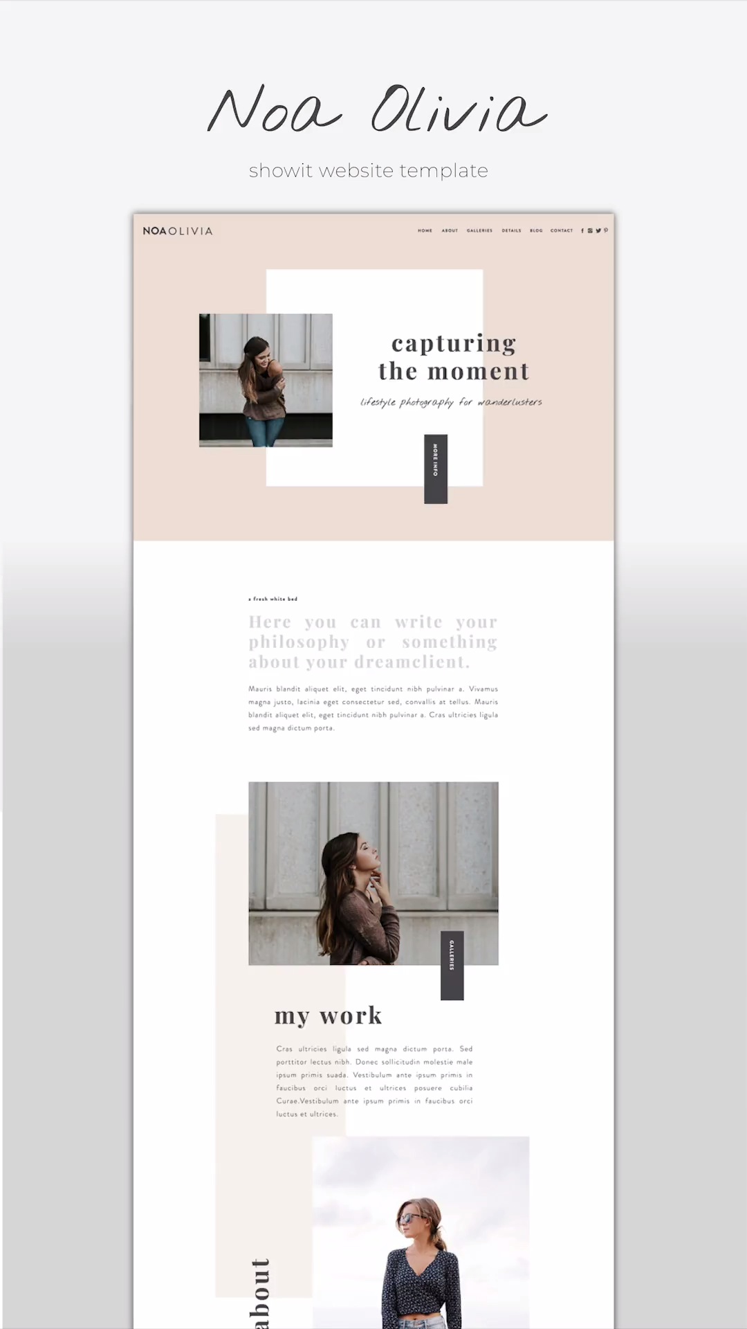 Web Design | Layout Sample
