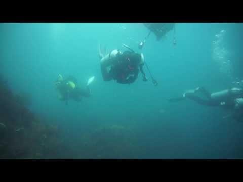 西伊豆も中性浮力で安全に楽しむ葛飾区のダイビングスクールは常磐線