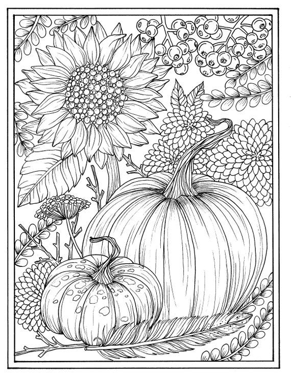Fall flowers and pumpkins digital coloring page Thanksgiving, mums, sunflower, autumn, digi stamp