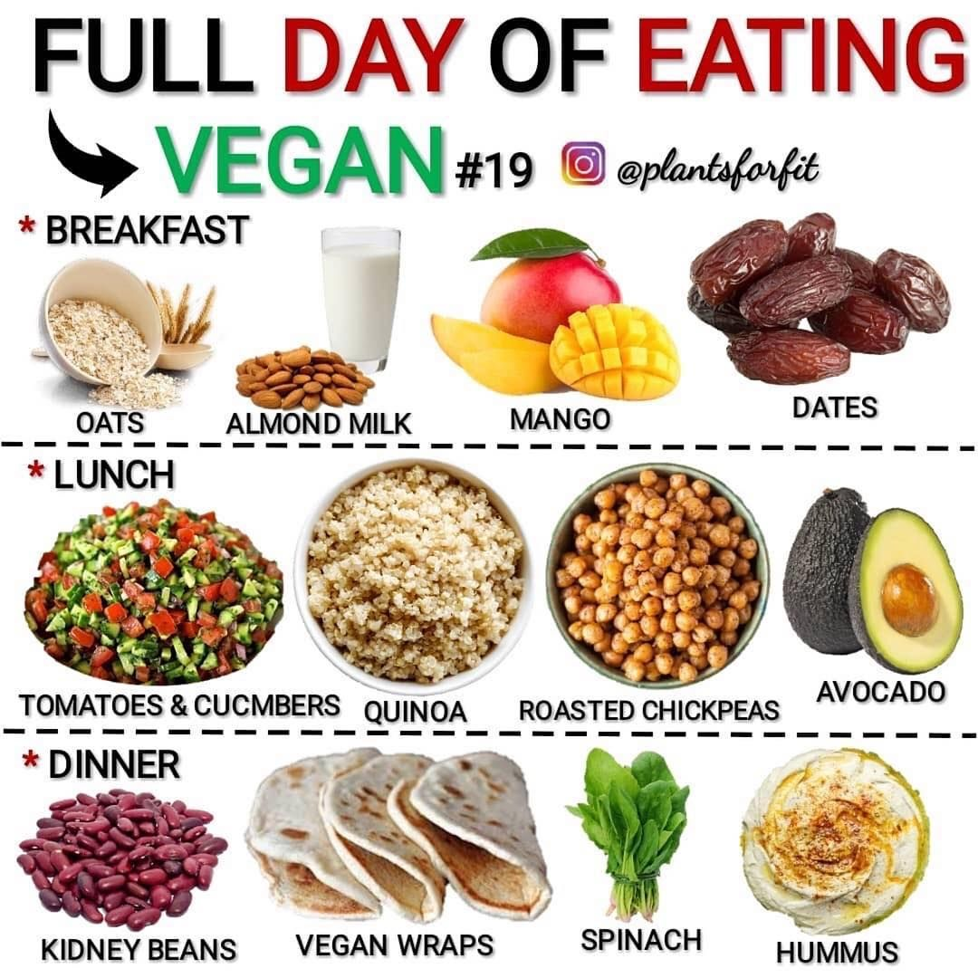 Vegan Information On Instagram Via Modernveganfam Full Day Of Eating Vegan Via Plantsforfit Mo Vegan Eating Vegan Meal Plans Vegan Meal Prep