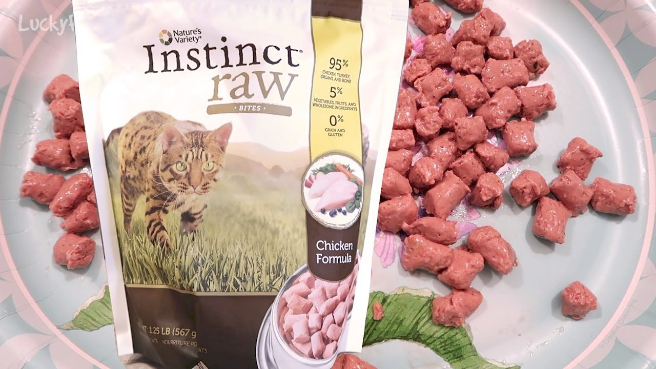 Nature's Variety Instinct Raw Frozen Cat Food Product