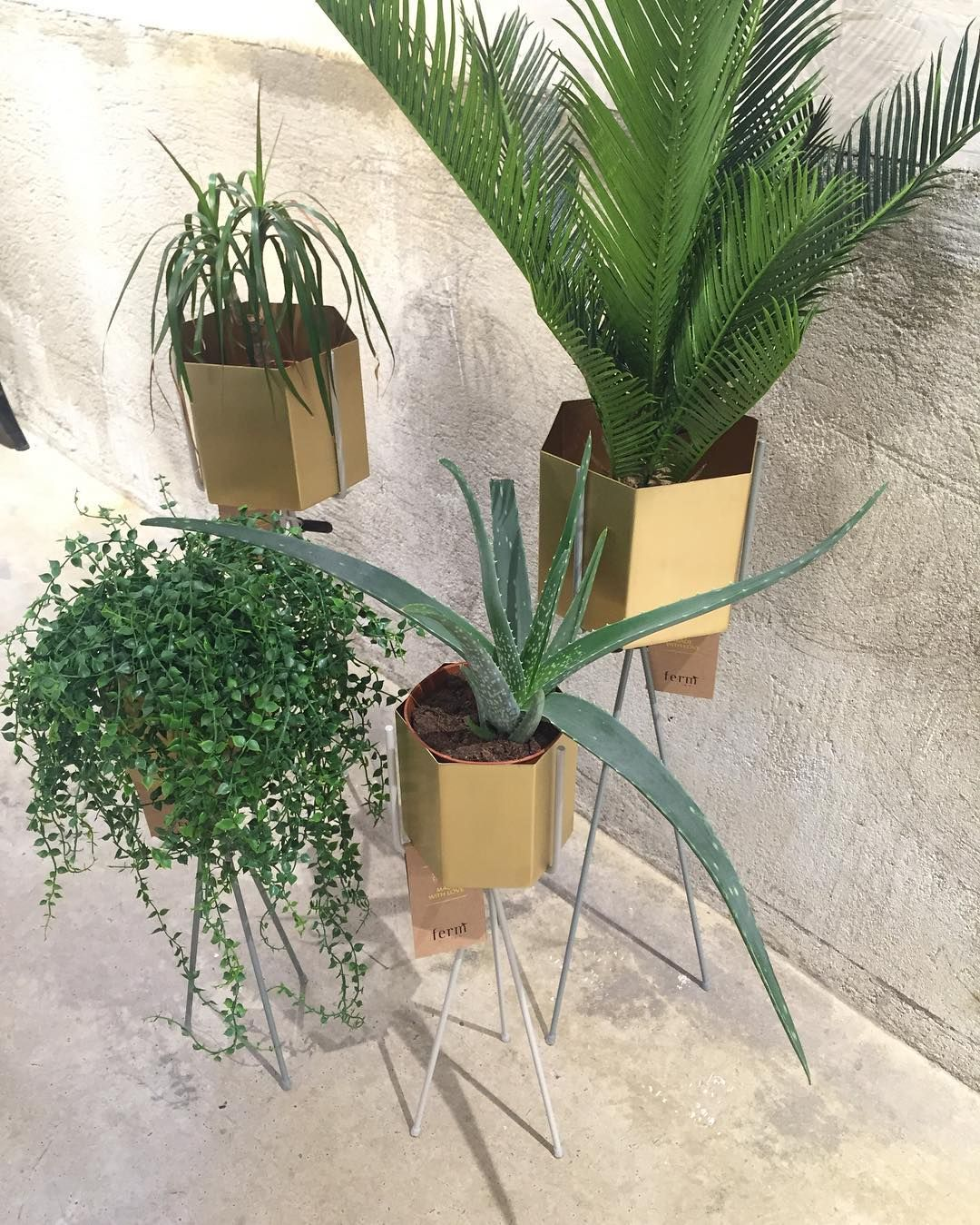 Ferm LIVING Plant Stand: With The Hexagon Brass Pots, Perfect For Adding  Some Foliage To A Small Space And Very Portable Too!