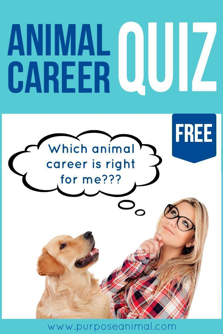 Check out this awesome FREE ANIMAL CAREER QUIZ! Submit your