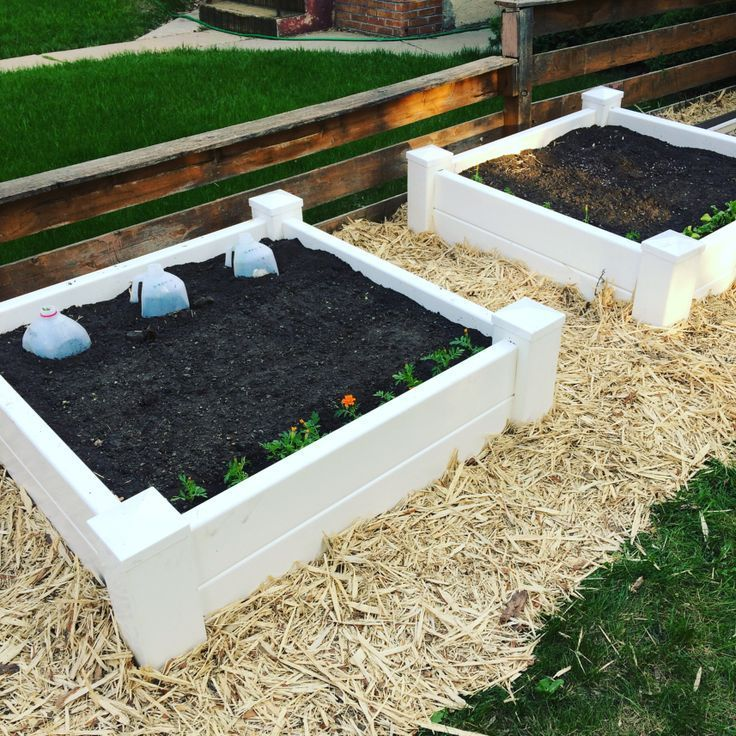 I Love My Vinyl Raised Beds In My Front Yard They Make Square Foot Gardening So Easy I Ll Show You How I Ma Vegetable Garden Raised Beds Square Foot Gardening