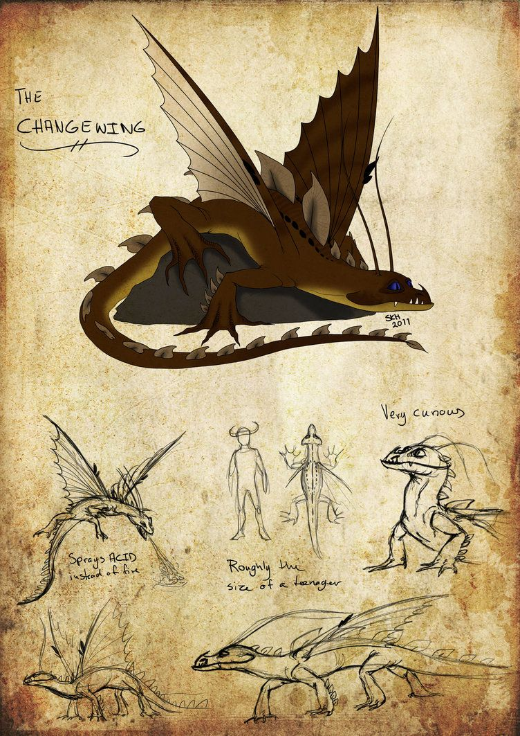 How To Train Your Dragon Changewing Httyd Changewing By Iceway