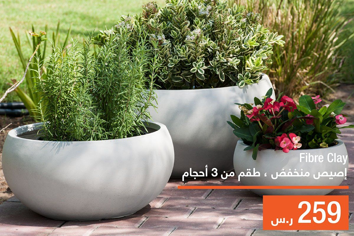 Abyat Ksa Abyatksa Twitter Plants Clay Fiber