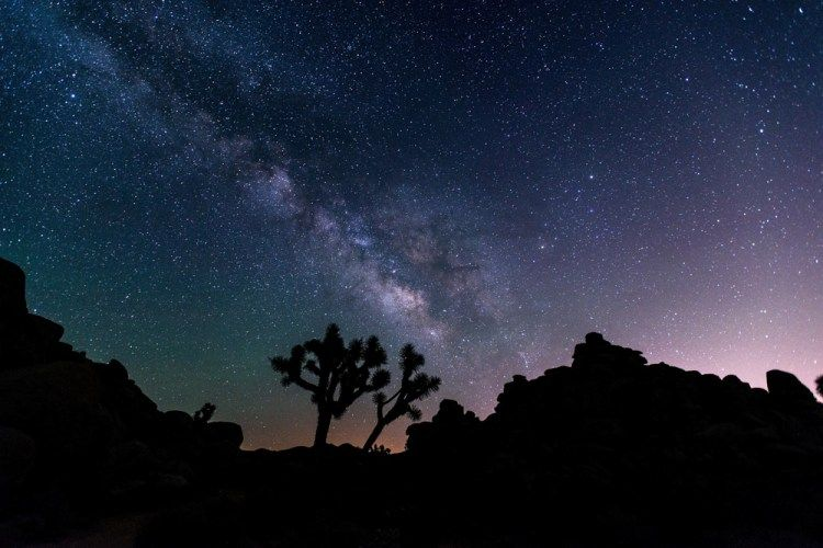 13 Amazing Joshua Tree National Park Attractions Things To