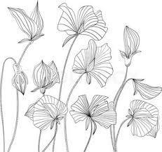 tegnede blomster - Google-søgning
