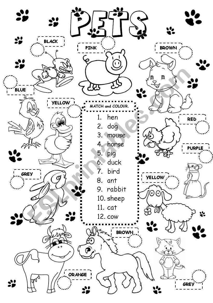 A Simple Worksheet Match And Colour On Pets Farm Animals And Colours Aquatic Animals Here Wate Animal Activities For Kids Animals Wild English Exercises [ 1169 x 821 Pixel ]