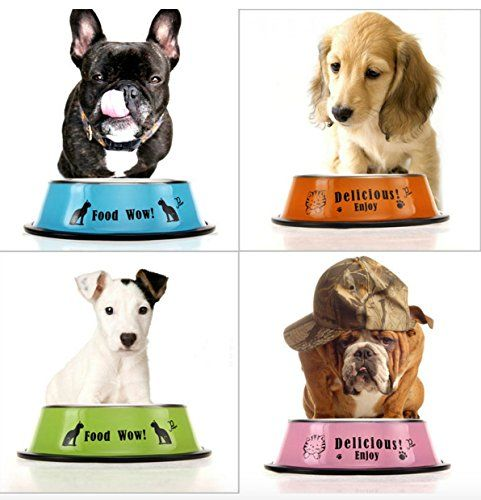 Robot Check Food Animals Dog Feeding Bowls Dog Bowls