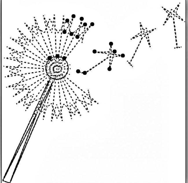 Pusteblume Lowenzahn Mit Pollen Samen Schwarz
