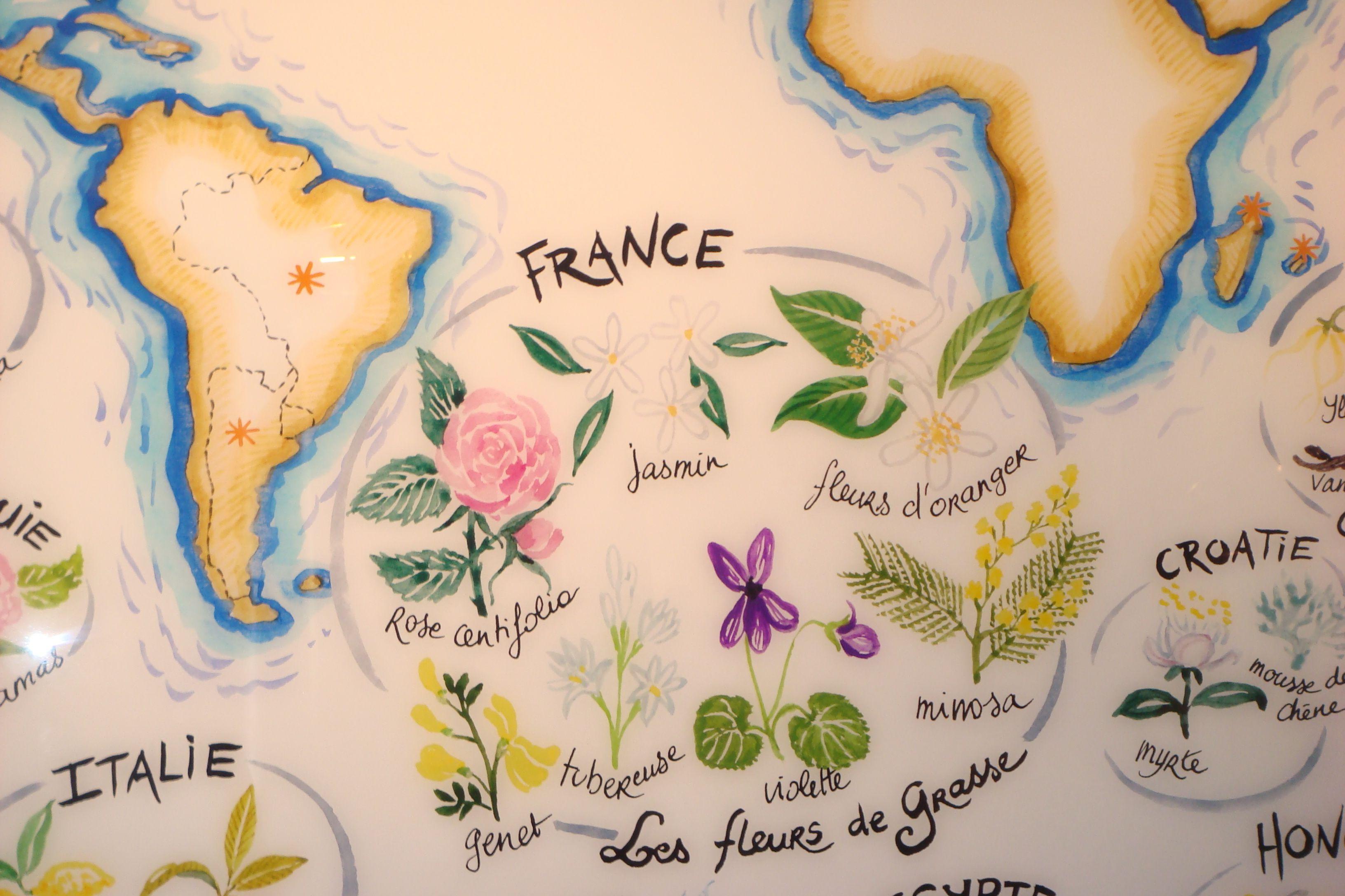 Grasse Perfume Factories in the French Riviera  Vino Con Vista