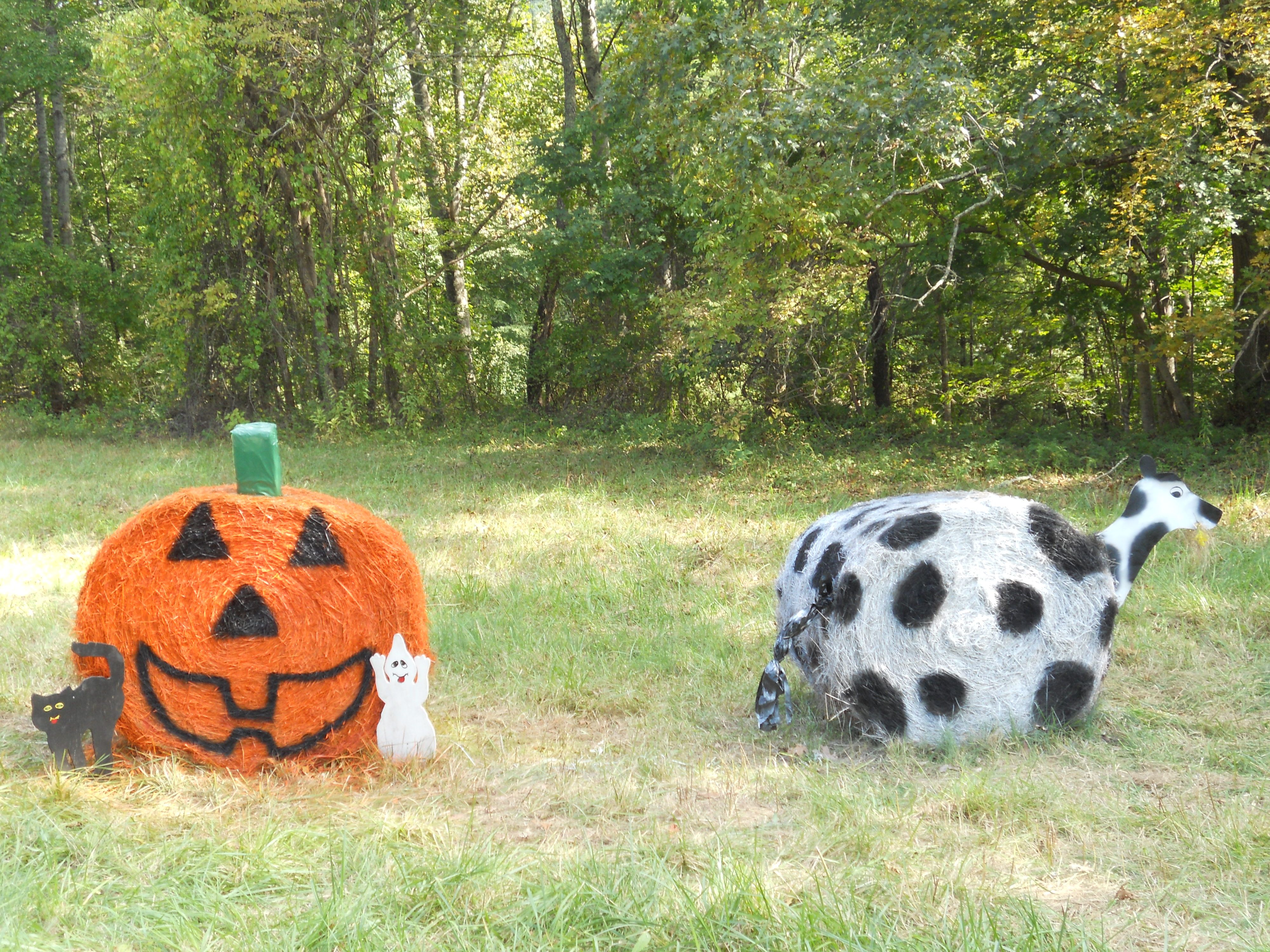 Hay Decoration Hay Bale Decor Pumpkin And A Cow Hay Bale Decoration