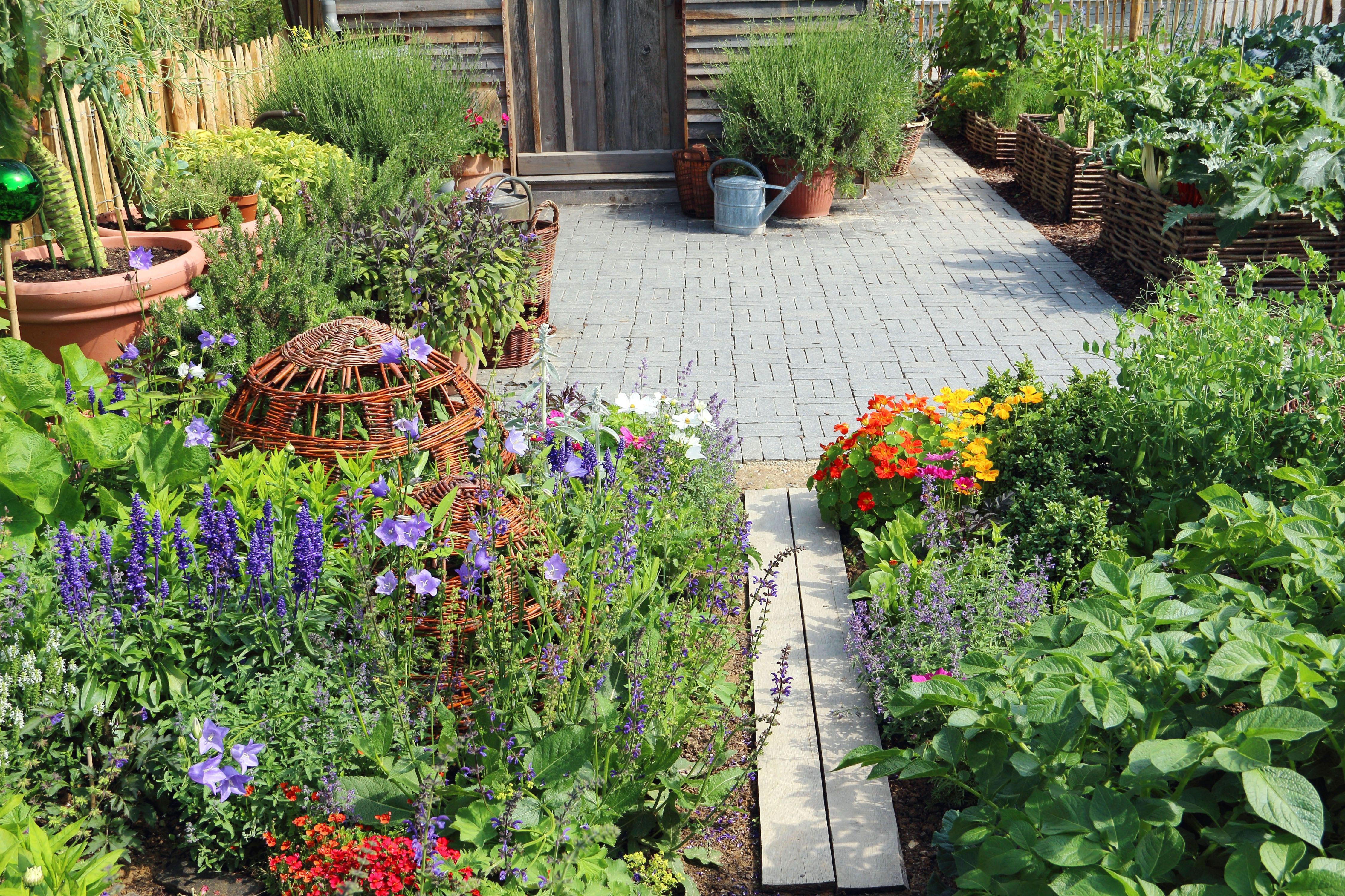 Planting Calendar When To Plant Vegetables Edible Landscaping
