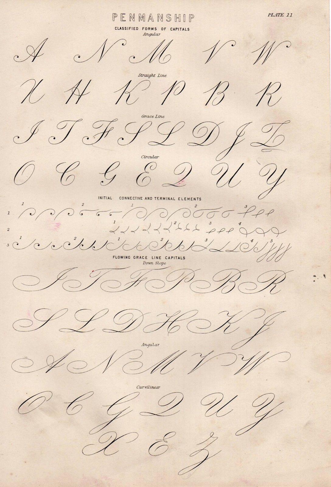 1886 Print Penmanship Classified Forms Of Capitals Angular Grace Curvilinear Handwriting Analysis Handwriting Writing Worksheets [ 1600 x 1088 Pixel ]