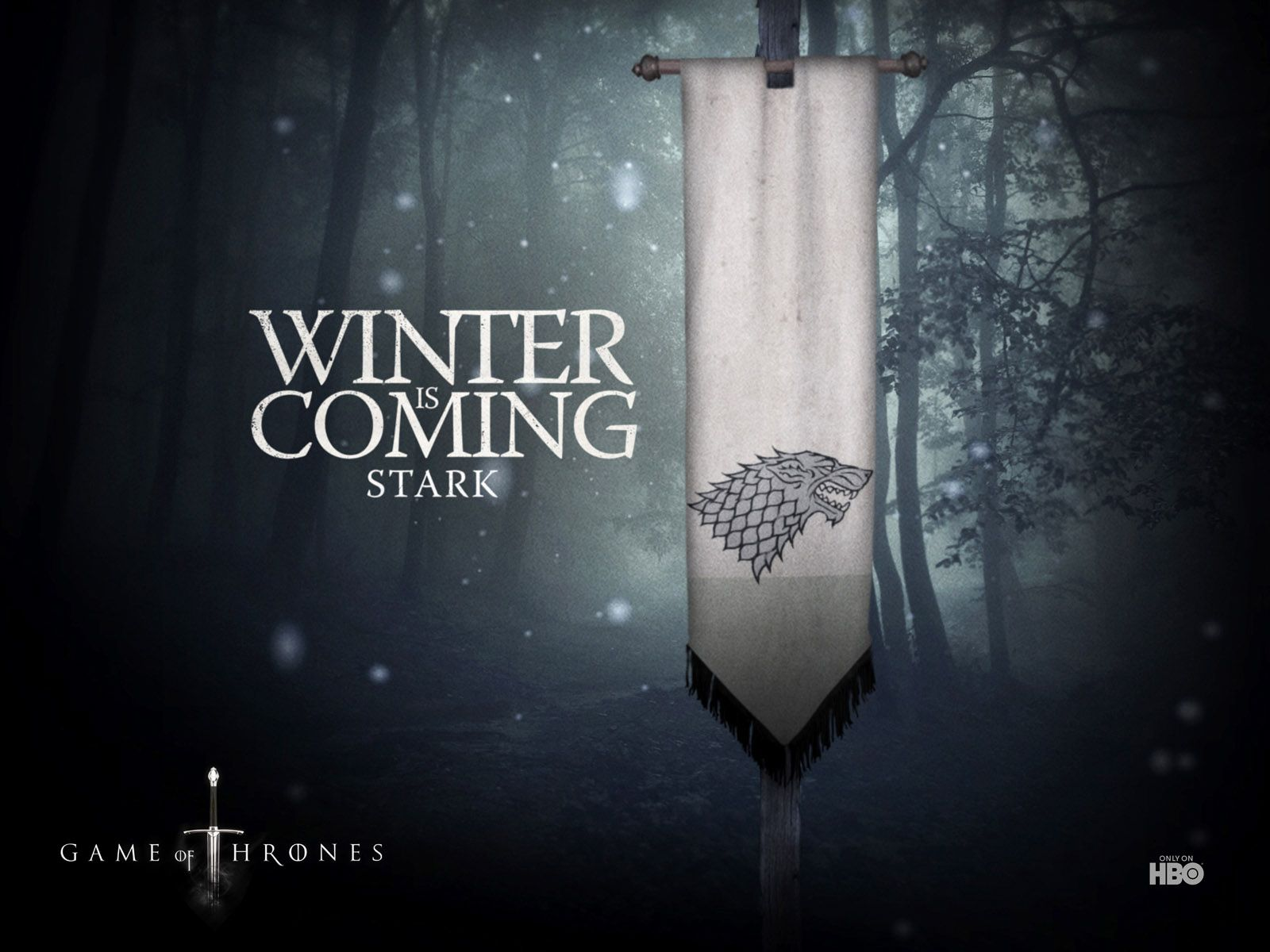 House Stark Game Of Thrones Poster Game Of Thrones Winter Hbo Game Of Thrones