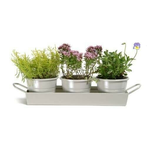Set Of 3 Metal Bucket Planters Plant Herb Pots Tray 400 x 300