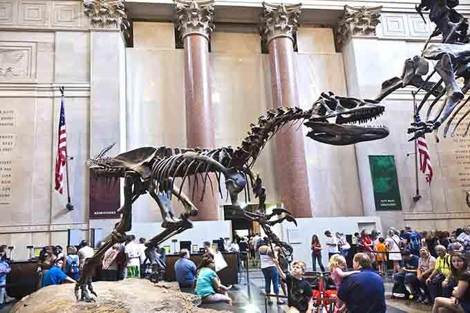 Las 5 Mejores Actividades Gratis Para Hacer En Nueva York Viaje A Nueva York Nueva York Museo De Historia Natural