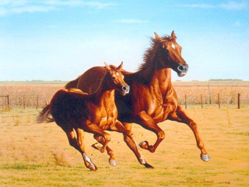 Pintura Moderna al Óleo: Cuadros de caballos pintados en oleo ...