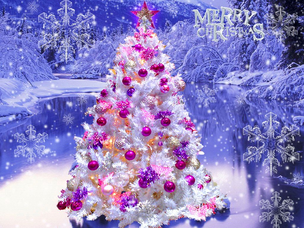 "Pretty Christmas Trees Purple & Pink Decorated Christmas Tree  Very Pretty  ""ho  Ho ."
