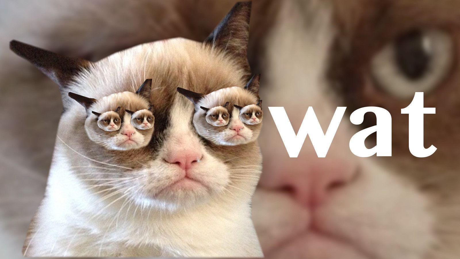 Pusheen Wallpaper Pusheen cute, Pusheen cat, Cute wallpapers