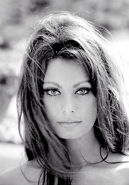 """""""Getting ahead in a difficult profession requires avid faith in yourself. That is why some people with mediocre talent, but with great inner drive, go so much further than people with vastly superior talent."""" Sophia Loren"""