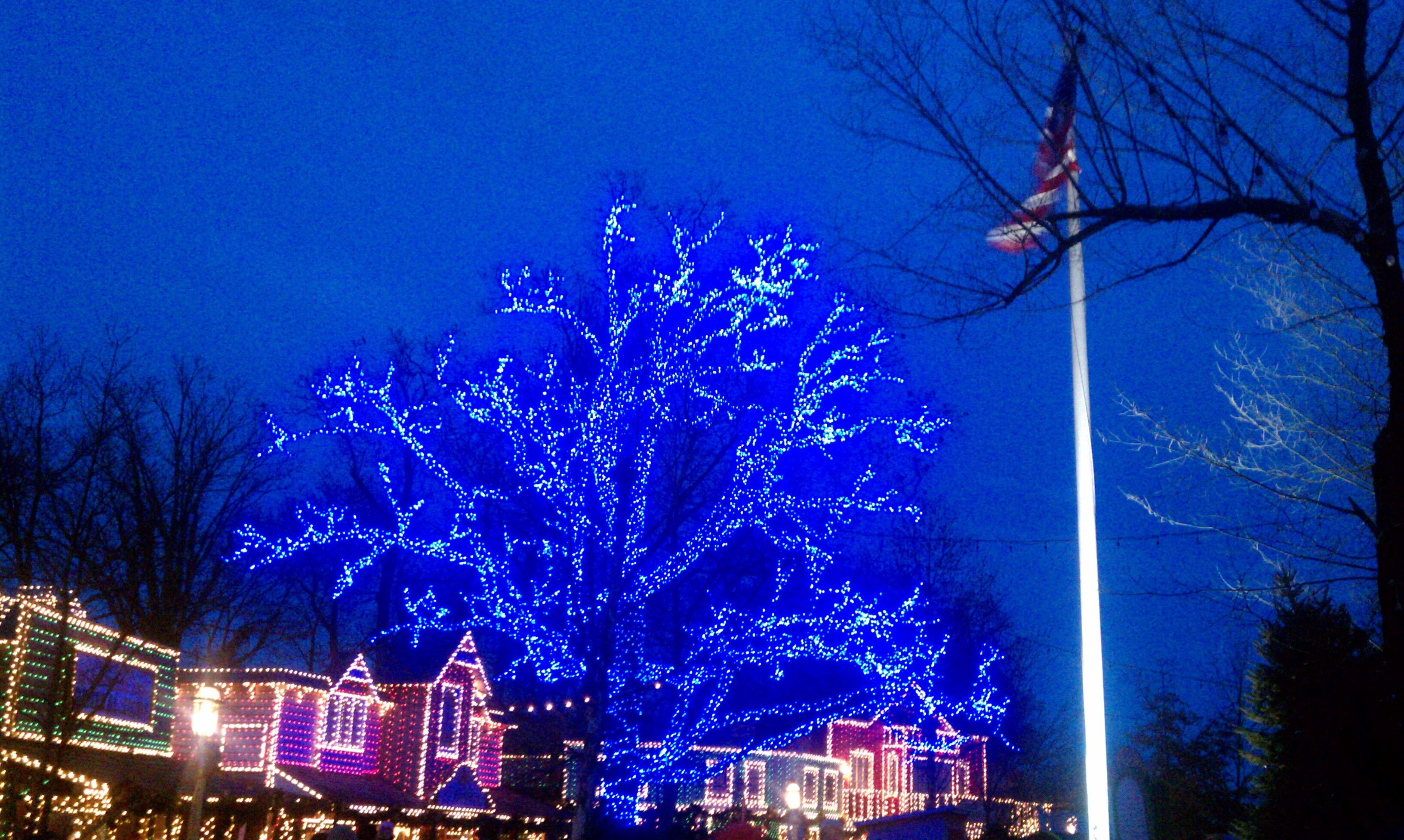 """The """"ice tree"""" next to the American Flag at Silver Dollar City!"""