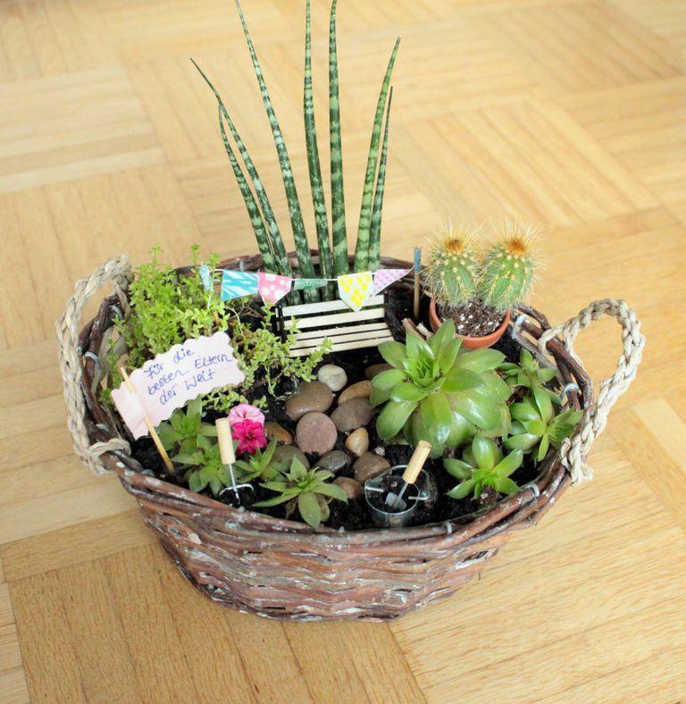 Niedlicher Diy Miniatur Garten Das Perfekte Geschenk Miniaturgarten Mini Garten Geschenke