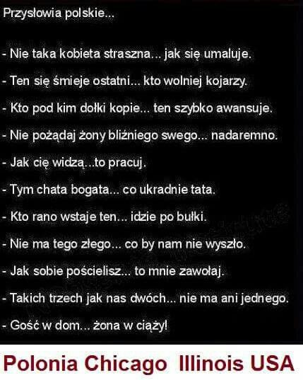 Pin By Urszula Abramowicz On Na Wesolo Funny Mems Funny Quotes Wtf Funny