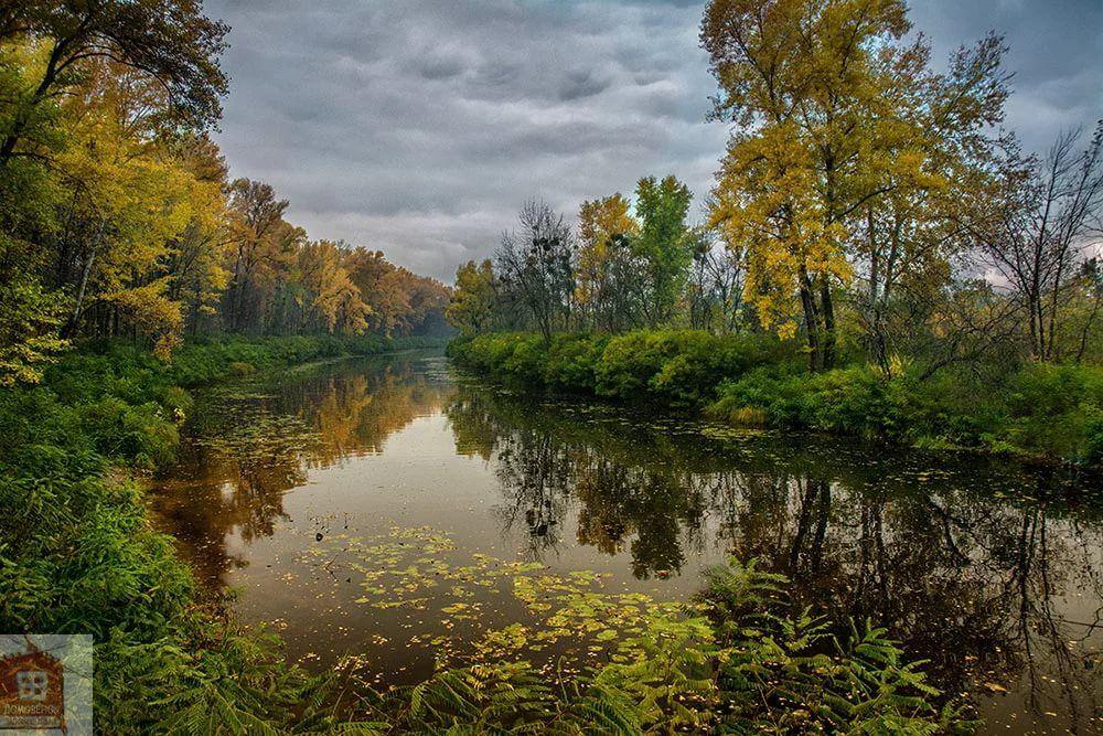 красивые фото природы пейзажи лето картинки: 11 тыс ...