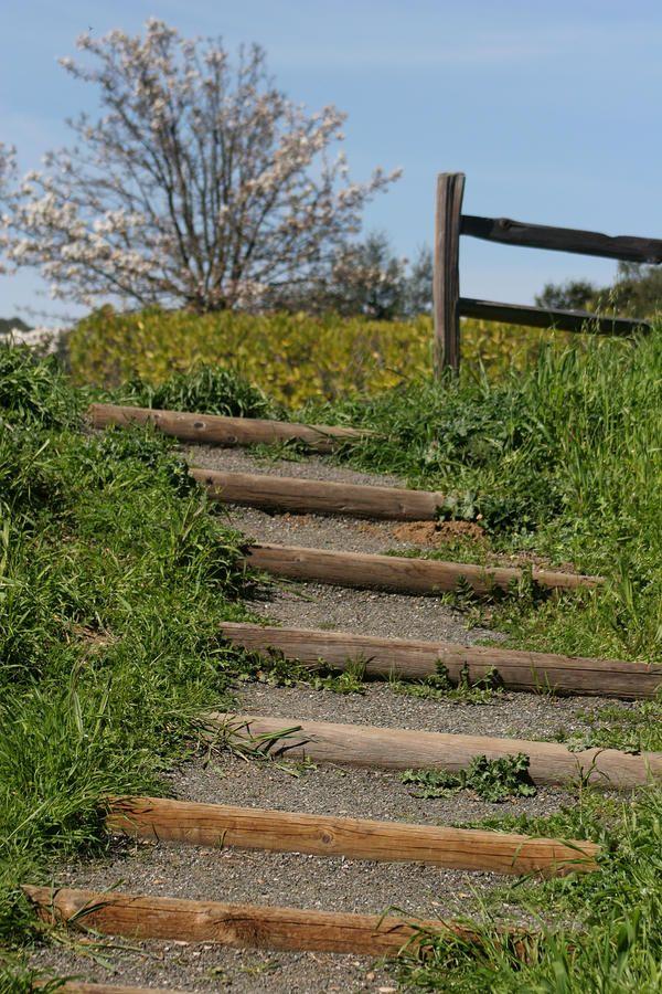 Steep Hill Steps Backyard Hill Landscaping Garden