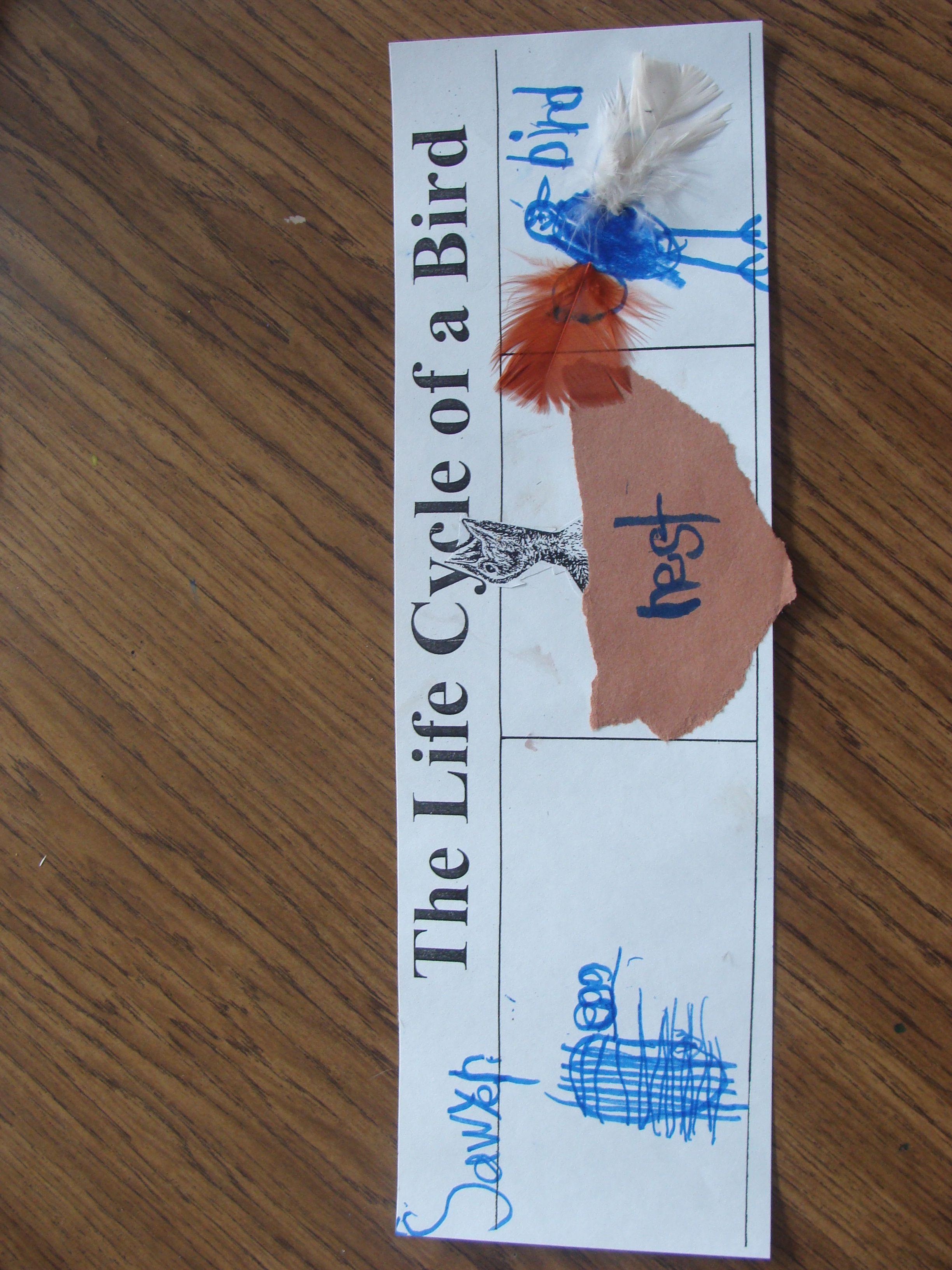 Davisonkindergarten Licensed For Non Commercial Use Only