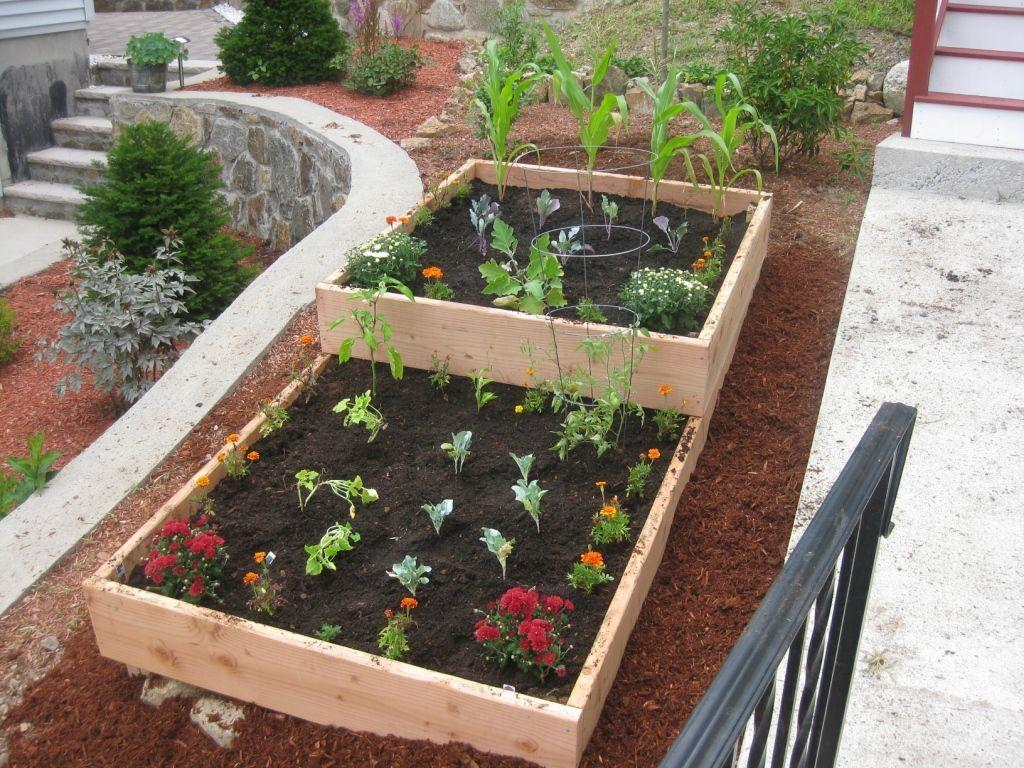 43 Raised Garden Beds Vegetables Backyards https