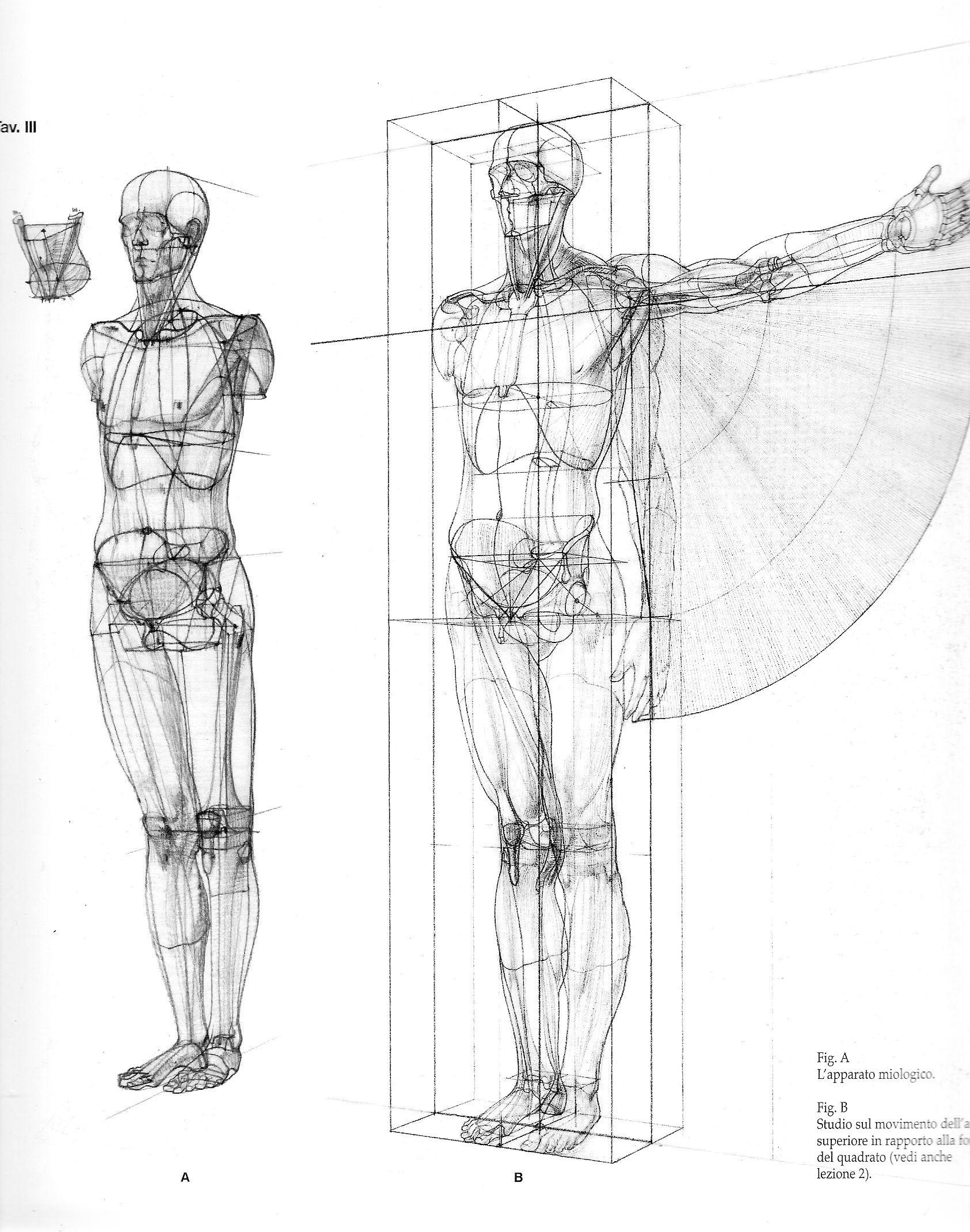Anatomia-02 …   dibujos y pinturas varios artistas contemporaneos ...