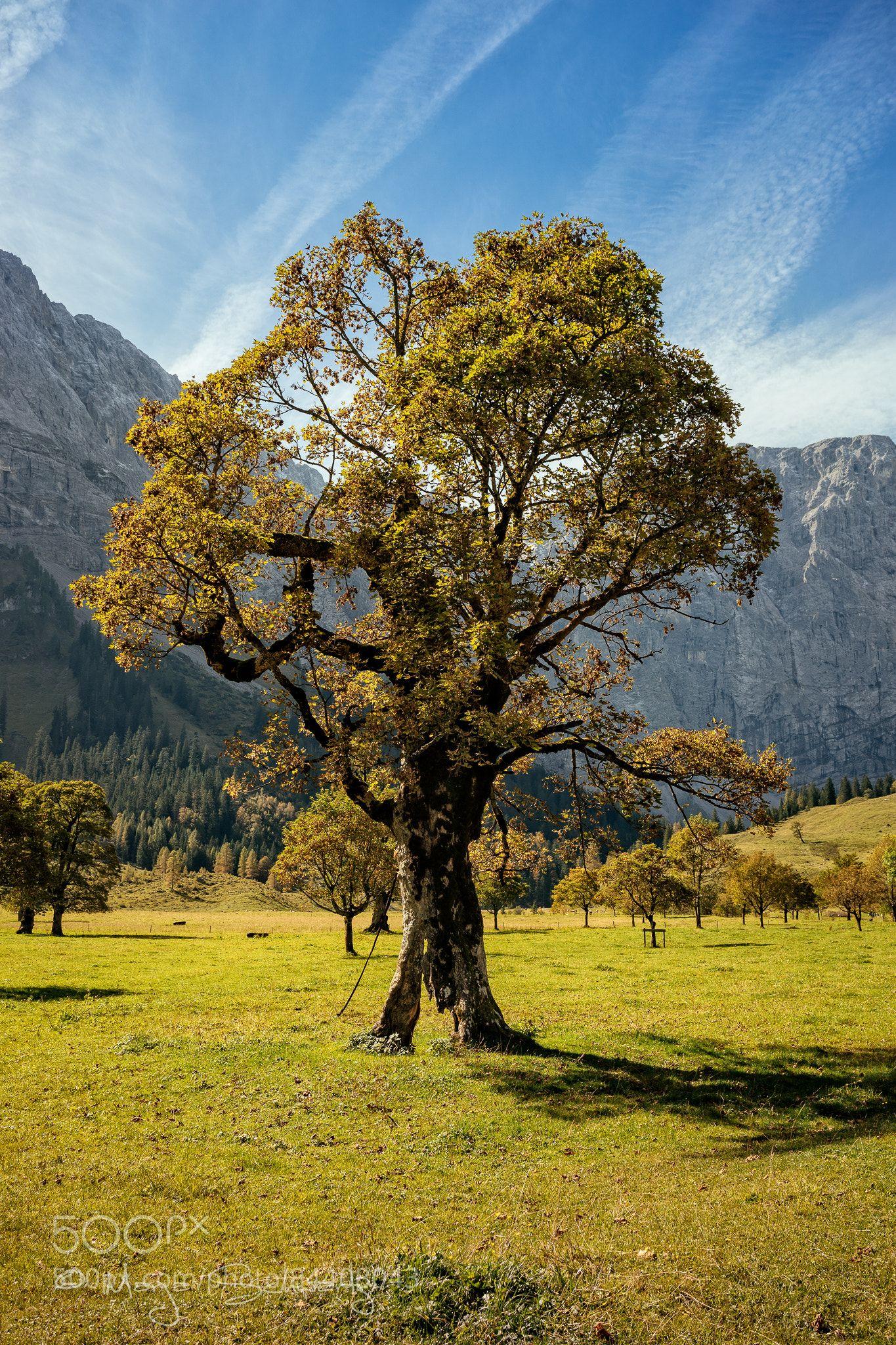 Autumn Ahornboden Austria By Marjaschwartz Ernststrasser