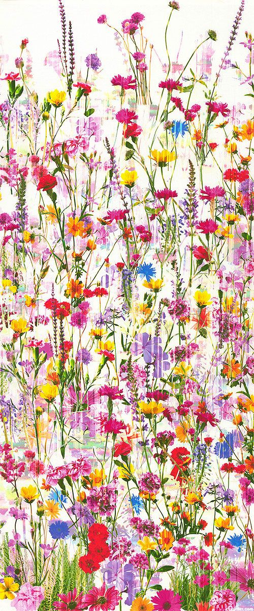 Mystic Meadow Wildflower Border Warm White Digital Print