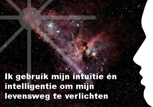 Mijn inspiratie: Ik gebruik mijn intu�tie �n intelligentie om mijn levensweg te verlichten