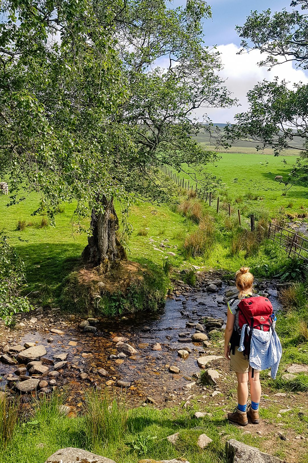The Complete Hiking Guide to the Speyside Way in S