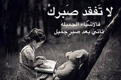 صور مكتوب عليها حكم Ali Quotes Wise Words Quotes