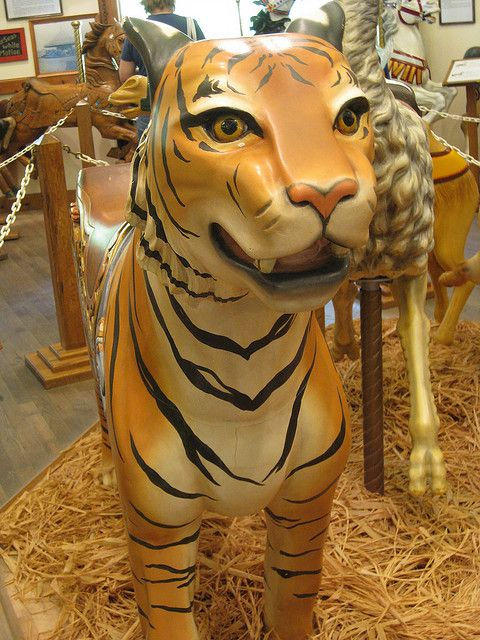 Tiger on display at the carousel museum at Knoebels Amusement Park, Pennsylvania ~ Carousels can have many other animals besides horses / Tiger Carousel Ride by StJenna, via Flickr
