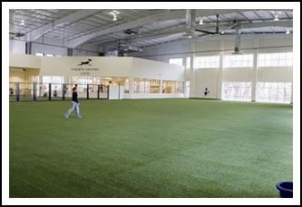 Unleashed, popular indoor dog park and supporter of animal rescue to close June 13th - Dallas animal rescue | Examiner.com