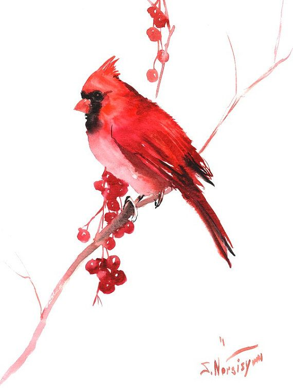 Watercolor Cardinal Tattoo: Red Northern Male Cardinal 12 X 9 In Original By