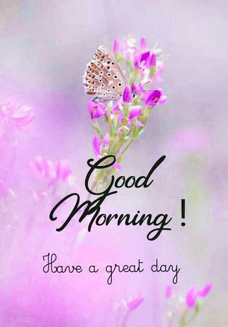 Good Morning Images For Whatsapp, Good Morning Pho