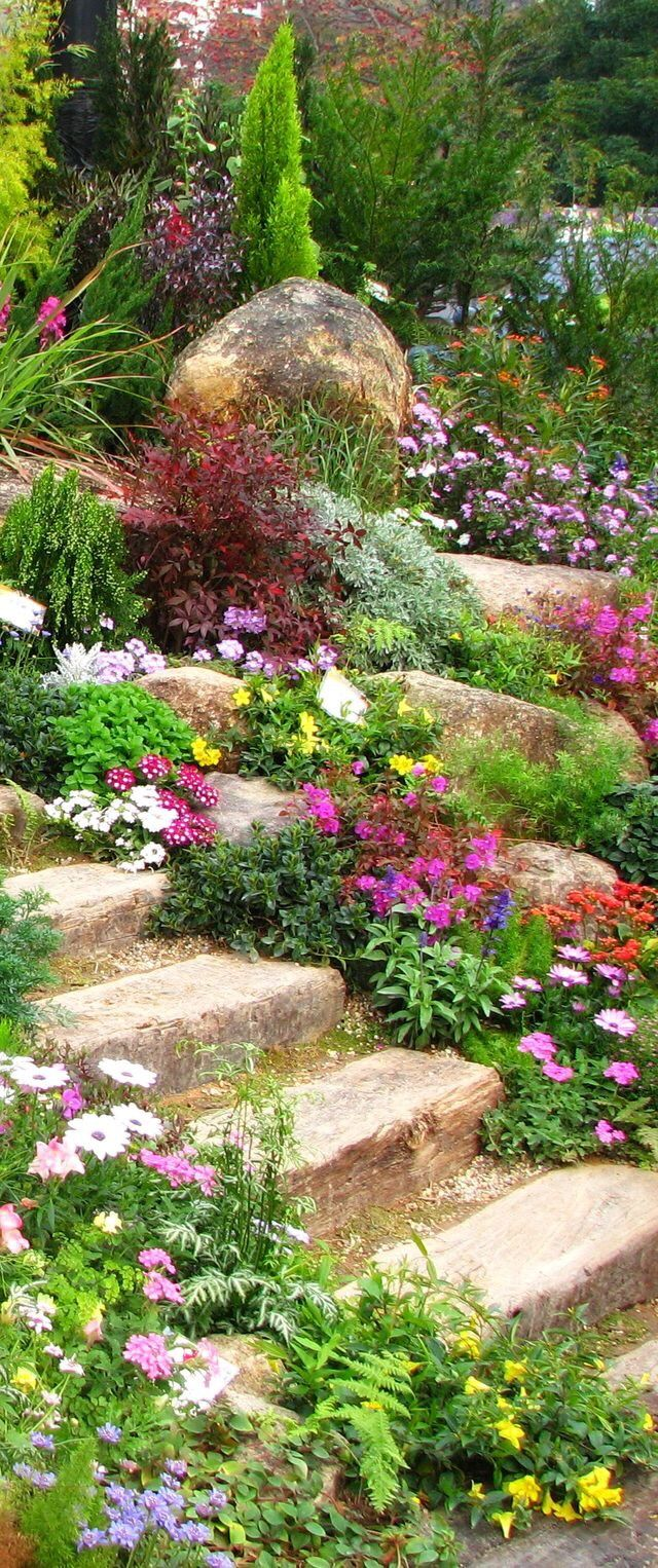 Escaliers Et Cascades De Fleurs Jardin Jardins Rocaille Jardin