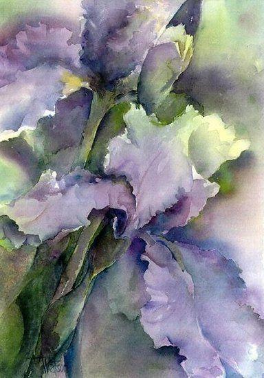 Iris Gaze Peinture Fleurs Aquarelle Florale