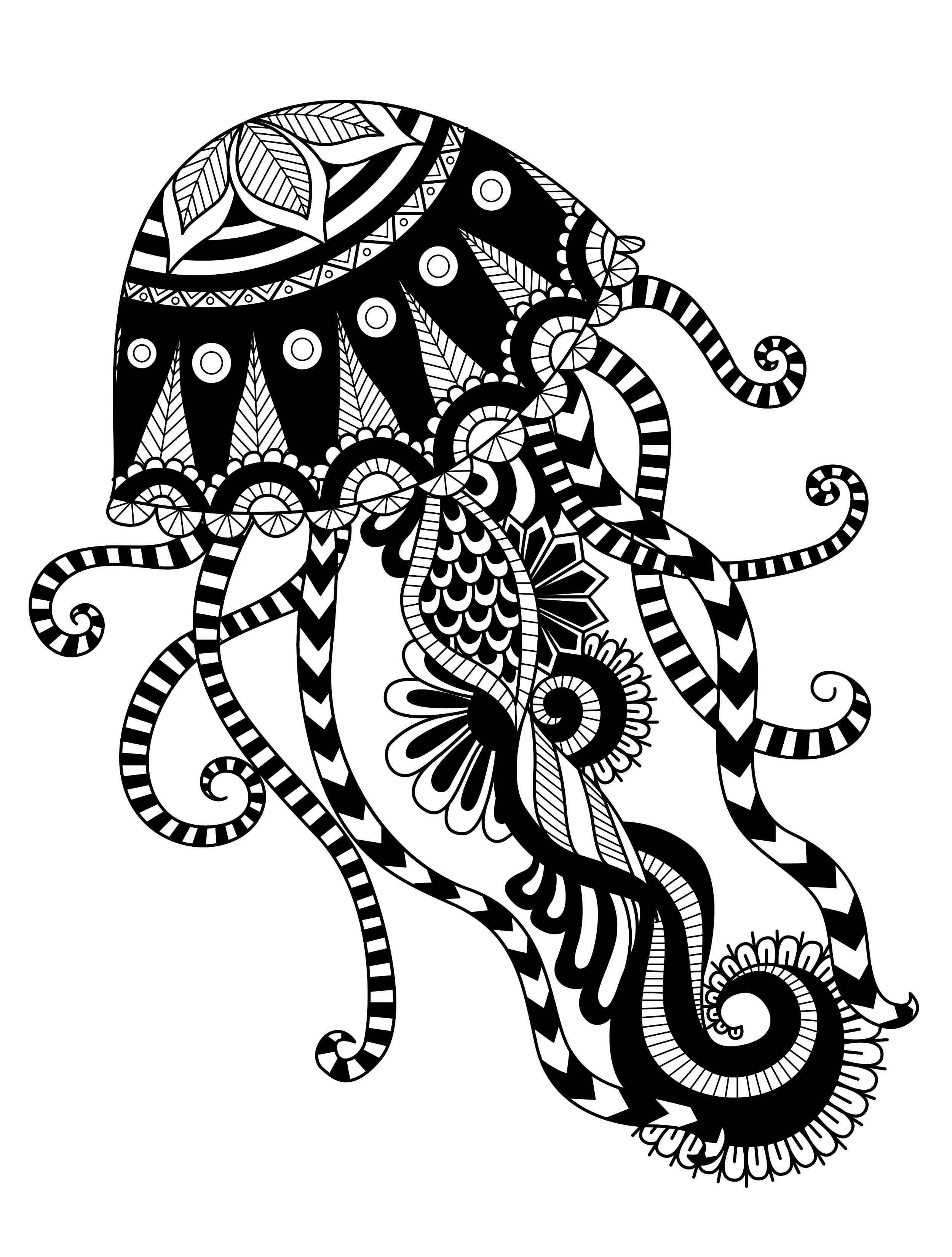 23 free printable insect animal adult coloring pages page 9 of - Jellyfish Coloring Pages