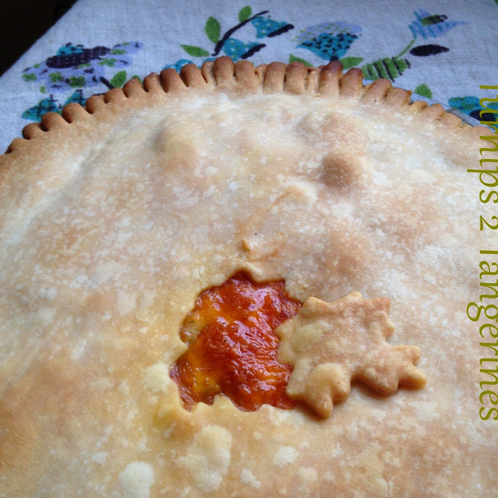 Turnips 2 Tangerines: Classic Chicken Pot Pie