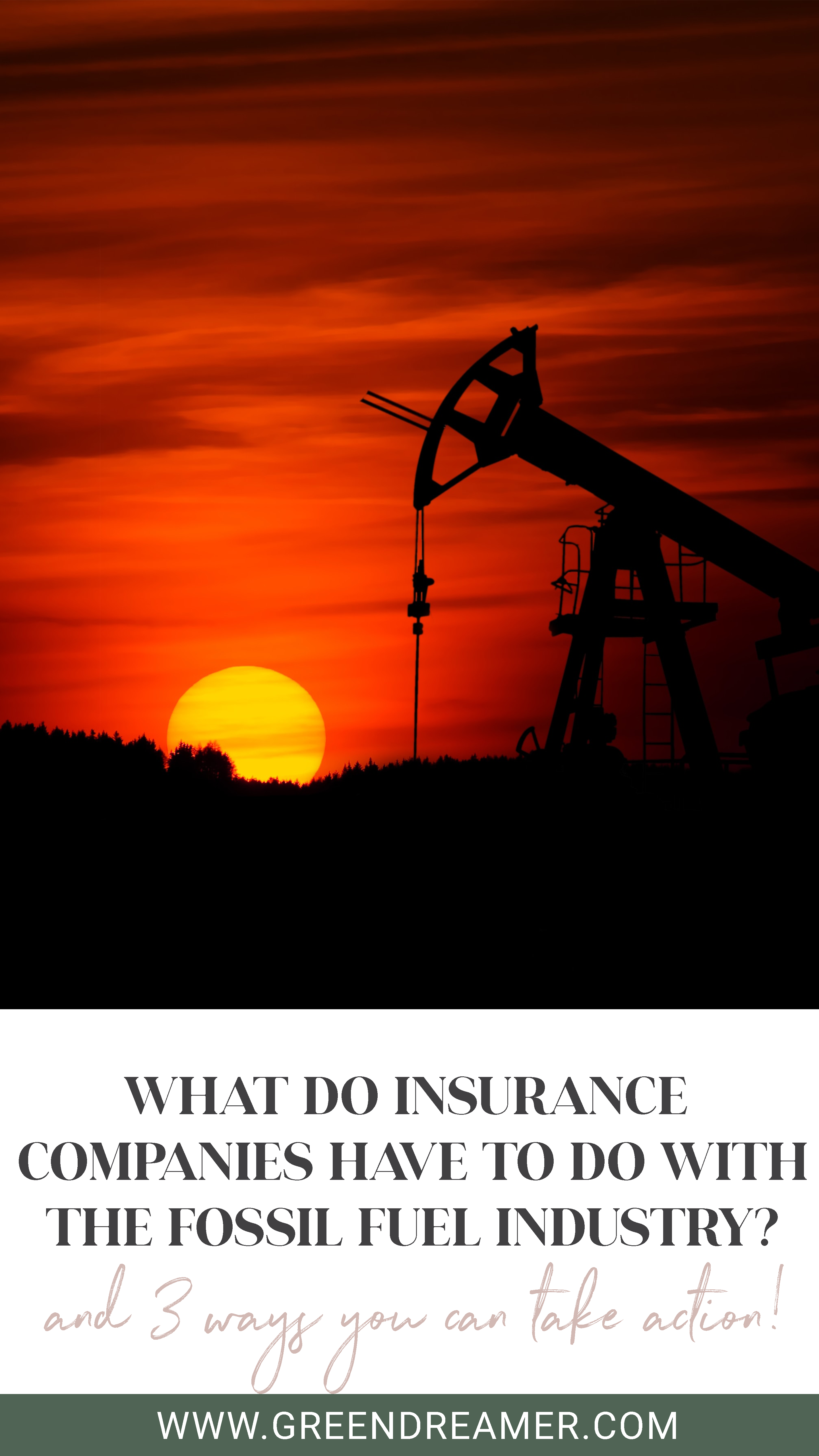 What Do Insurance Companies Have To Do With The Expansion Of The
